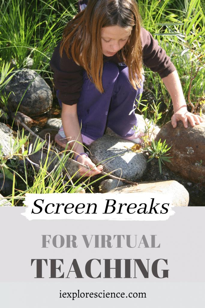 Screen Breaks for Virtual Teaching