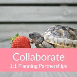 Collaborate 1:1 Planning Partnership (Turtle)