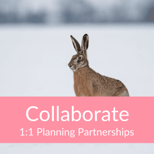Collaborate 1:1 Planning Partnership (Hare)