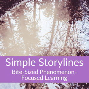 Simple Storylines: Bite-Sized Phenomenon-Focused Learning